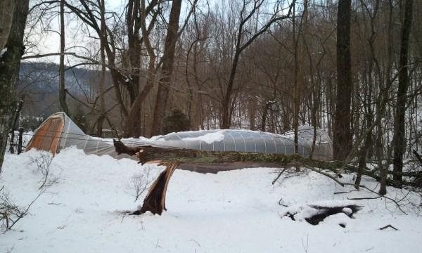 Snow-2013-03-07